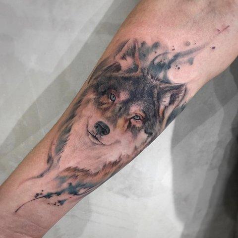 Мужская тату волк цветная реализм на предплечье
