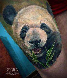 Панда кушает