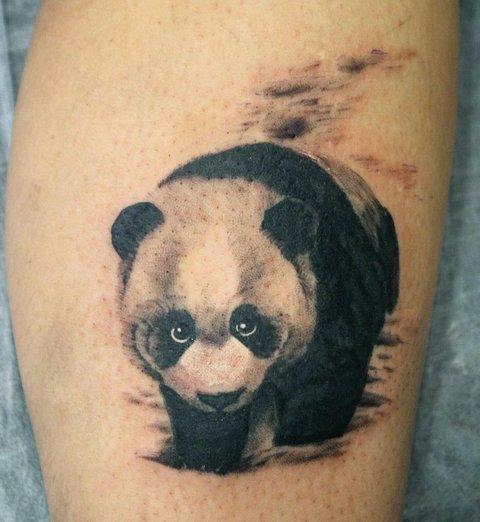 Изображение панди на ноге