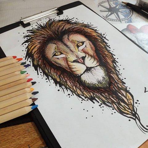 Цветной эскиз льва с большой гривой
