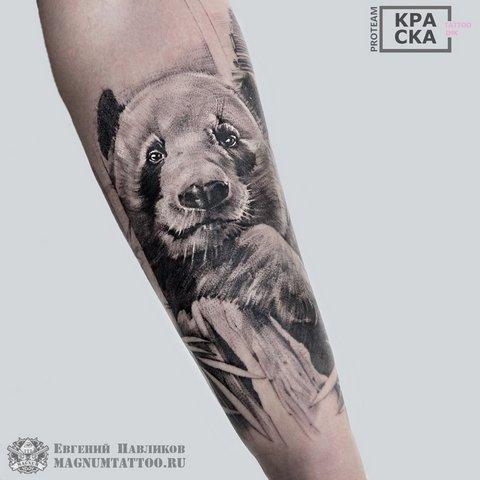 Большая татуировка панды