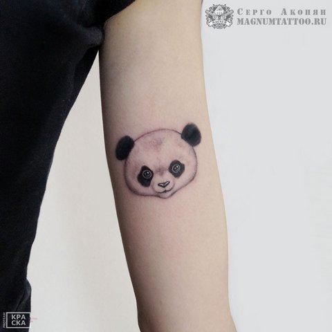 Тату головы панды на руке
