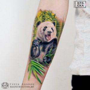 Цветное изображение панды на руке