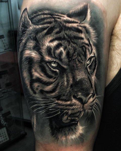 Большая Татуировка Хищника на Плече для Мужчин