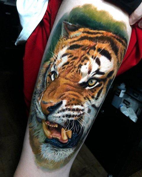 Красивая Татуировка с Цветными Тигром для Парней